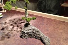 Baum 03